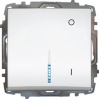 2 Polige Schalter mit Licht